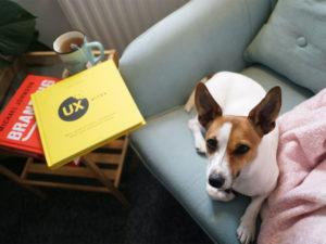 libri UX design cane su divano